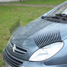 Cil pour décoration voiture